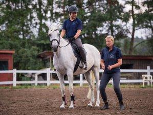 8 Day Adult Horse Riding Holiday in Hitzacker, Lower-Saxony