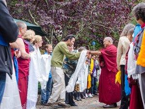 4 Days New Year Yoga Retreat in California