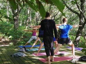 7 Day Forest and Yoga Holiday in Cereceda, Asturias