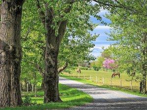 5 Day Yoga Retreat at Countryside Farm in Hershey, Pennsylvania