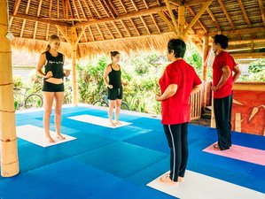5 Days Balinese Yoga, Tai Chi, Martial Arts and Culture Wellness Retreat in Bali, Indonesia