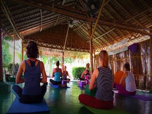 12 Days Alchemy 1, Detox, and Yoga Retreat in Thailand
