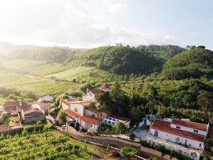 5 Days Iyengar Yoga Retreat in Columbeira, Portugal