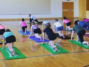 22 Days 200 Hour Yoga Teacher Training Course in Dechantskirchen, Austria