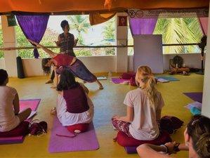 14 días, profesorado de yogaterapia y cuidado de la salud de 100 horas en Goa, India