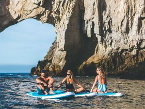 4 Days SUP Surf Camp Cabo San Lucas, Baja California Sur, Mexico