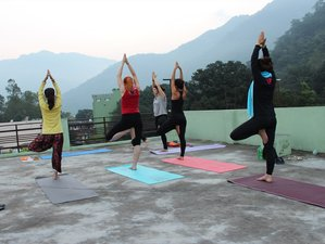 7-Daagse Ashtanga & Hatha Yoga Retraite in Rishikesh
