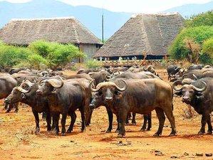 3 Days Safari in Tsavo West and East National Park, Kenya