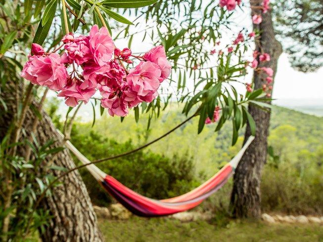 6 Days Harmonize Lifestyle Detox and Mindfulness Yoga Retreat in Ibiza, Spain