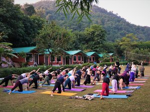 12 Day 100-Hour Multi Style Yoga Teacher Training in Bali