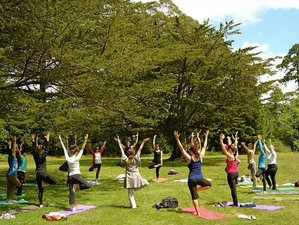 13 Days Spiritual and Cultural Yoga Retreat India
