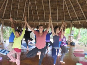 8 Day Yoga Tour and Nature Holiday with Hiking and Culinary Cooking Experience in the Azores