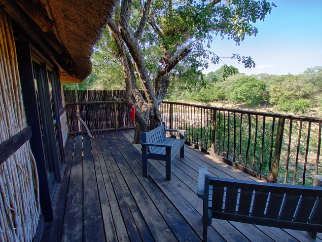 5 Days Lodge and Treehouse Kruger Park Safari, South Africa