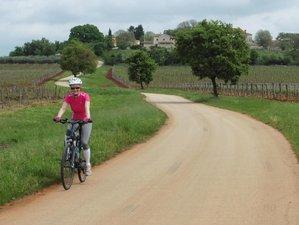 8 Days Parenzana Trail Cycling Holiday in Italy, Slovenia, and Croatia