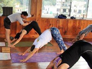 5-Daagse Internationaal Yoga Festival in Mysore, India