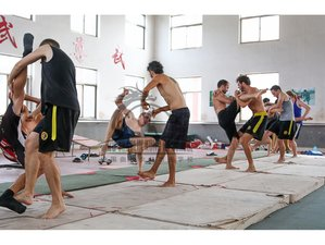 9 Months Shaolin Kung Fu Training in Qufu, China