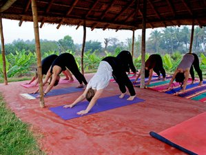 7 Day Natural Cleansing Detox and Yoga Retreat in Mysore