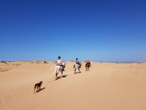5 Day Loop of Argana Horse Riding Holiday in Essaouira