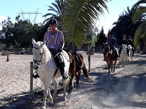 4 Days Yoga and Riding Retreat in Costa Blanca, Alicante, Spain