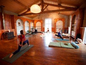 8 Days 50hr Raja Yoga: A Journey through the Chakras Yoga Teacher Training in France