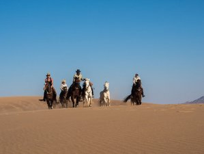 11 Days Scenic Safari and Horse Riding Holiday in Namib Desert, Namibia