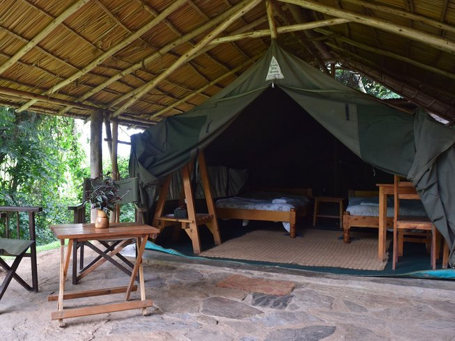 6 Days Gorilla Tracking Safari in Uganda