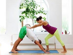 21 Days 200-hr Vinyasa Yoga Teacher Training in UK