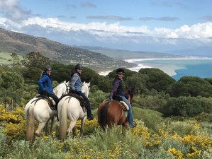 7 Days Intensive Horse Riding Tours in a Nature Park, Andalusia, Spain