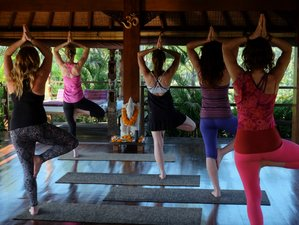 8 Day Pure Bliss Empower Me Yoga Retreat in Ubud, Bali