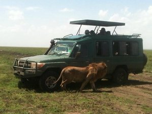 5 Days Best Camping Safari in Tanzania