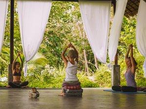 5 Days Meditation and Awakening Retreat in Koh Phangan, Thailand
