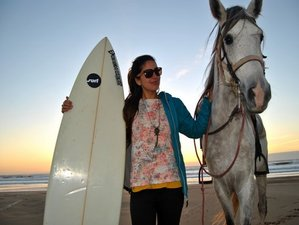 7 Day Surf Trip and Horse Riding - Down the Atlantic Coast Starting in Sidi Kaouki, Essaouira