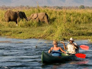 10 Days Luxury Safari South Africa and Zimbabwe