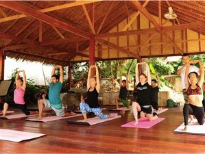 7 Day Yoga, Tai Chi, and Qi Gong Holiday in the Algarve With Boat Trip and Party