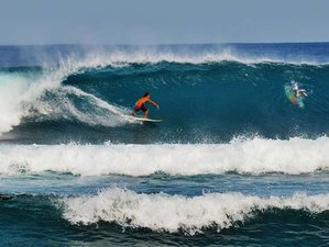 29 Days Budget Surf Camp Philippines