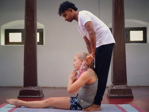 14 Day Ashtanga Vinyasa Yoga Foundations Course Retreat in Mysore