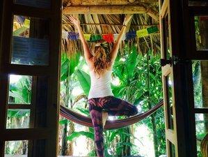 14 Days Traditional Hatha Yoga Retreat on Lake Atitlan, Guatemala