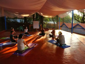 11 Day 100-Hour Hatha Yoga Teacher Training in Gokarna