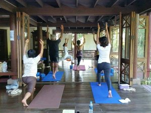 3 Days Detox, Meditation, and Yoga Retreat in Thailand