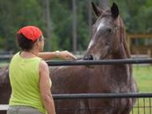 2 Day Retreat on a Horse Farm, Mindful Moments and Yoga in Loxahatchee Groves, Florida