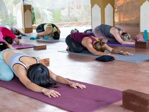 7 Day Yoga and Osho Meditation Retreat in a Serene Environment in Goa