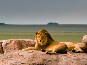 5 Days Marvelous Kenya Safari