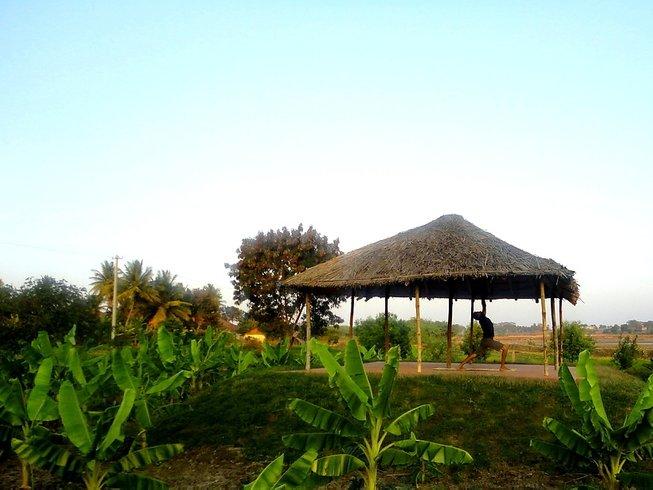 8 jours en stage de yoga et guérison holistique dans le Mysore, Inde