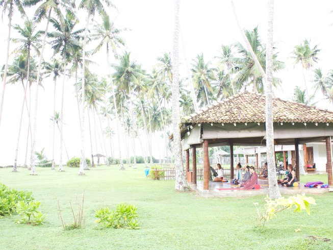 7 Days Surf and Yoga Escape Sri Lanka