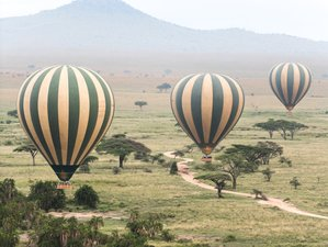 7 Days Ndutu Area Great Migration Safari in Tanzania