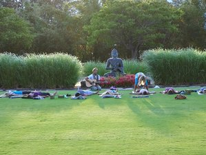 5 Day Divinely Aligned Meditation and Yoga Retreat in Maui, Hawaii