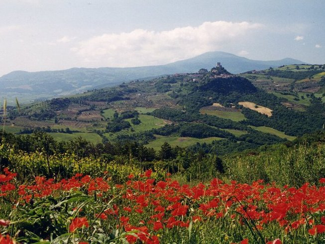 8 Days Culinary and Wine Tours in Tuscany