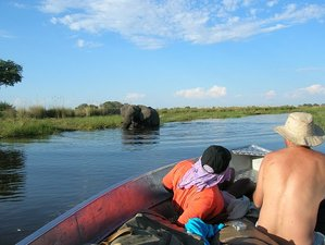 3 Days Botswana Safari on a Mokoro