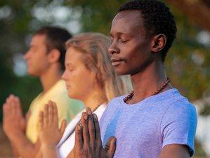 6 Days Essentials of Meditation and Yoga Retreat New York, USA