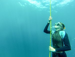 4 Day Freediving Level 1 Course and Yoga Holiday in Bali, Indonesia